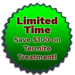 termite-promo