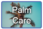 palm-care