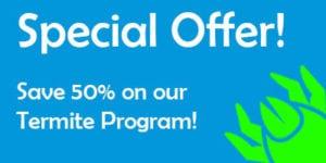 termite-offer