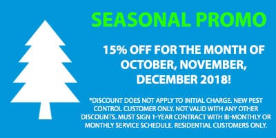 seasonal promotion
